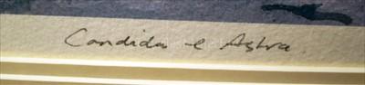 Lot 26 - δ GUY L'HOSTIS (FRENCH, 1945- )<br/>Shamrock,...